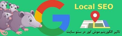 تغییرات الگوریتم موش کور possum در نتایج جستجوی محلی گوگل