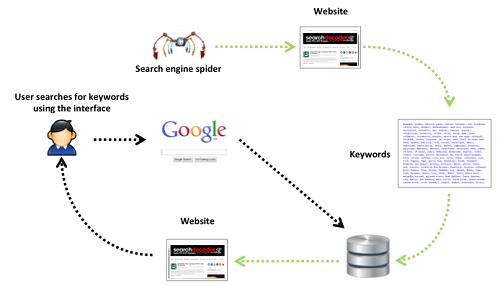 اجزا اصلی یک موتور جستجو چیست و چگونه کار می کند