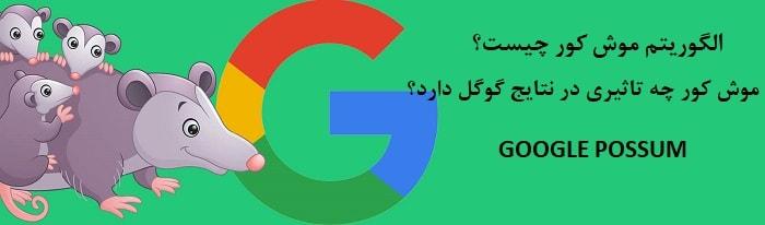 معرفی الگوریتم موش کور گوگل در تاثیر آن در سئو سایت