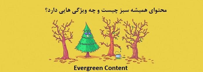اهمیت محتوای همیشه سبز برای سایت